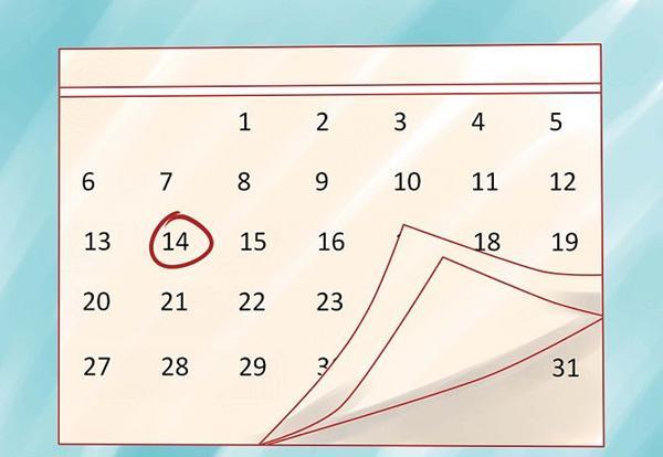 Cách tính ngày trứng rụng